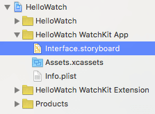 Select WatchKit App Storyboard
